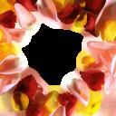 Праздники (12) - 1741x2145 png