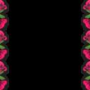 Праздники (24) - 720x576 png
