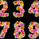 Цветочные цифры - 3180х1689 png