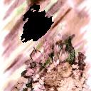 Цветы2 1848х2309