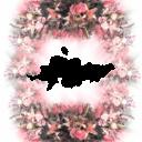 Цветы14 - 1952х2439