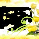 Цветы14