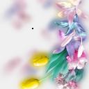 Рамки - Цветы