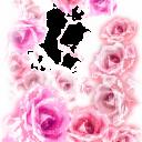 Цветы6 - 1687х2109