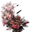 Цветы11 - 1896х2170