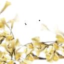 Цветы4 - 1930х1544