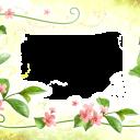 Цветы12 - 3543х2480