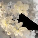 Цветы8 - 1767х1412