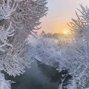 Серебро Муринского ручья на рассвете...
