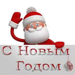 s_novim_godom2
